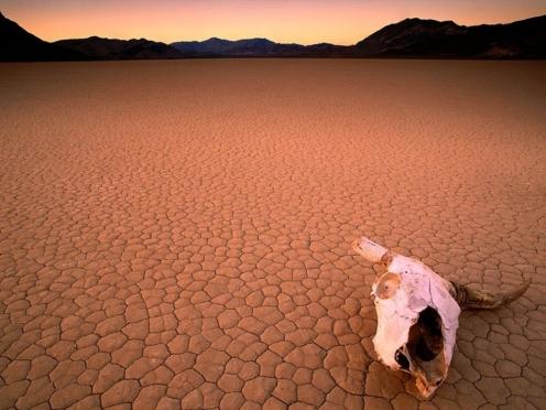 collasso deserto